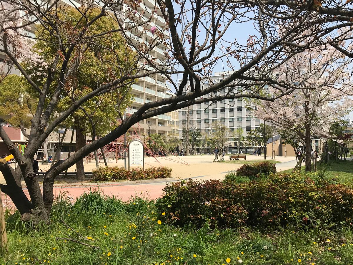 近所には六本松公園
