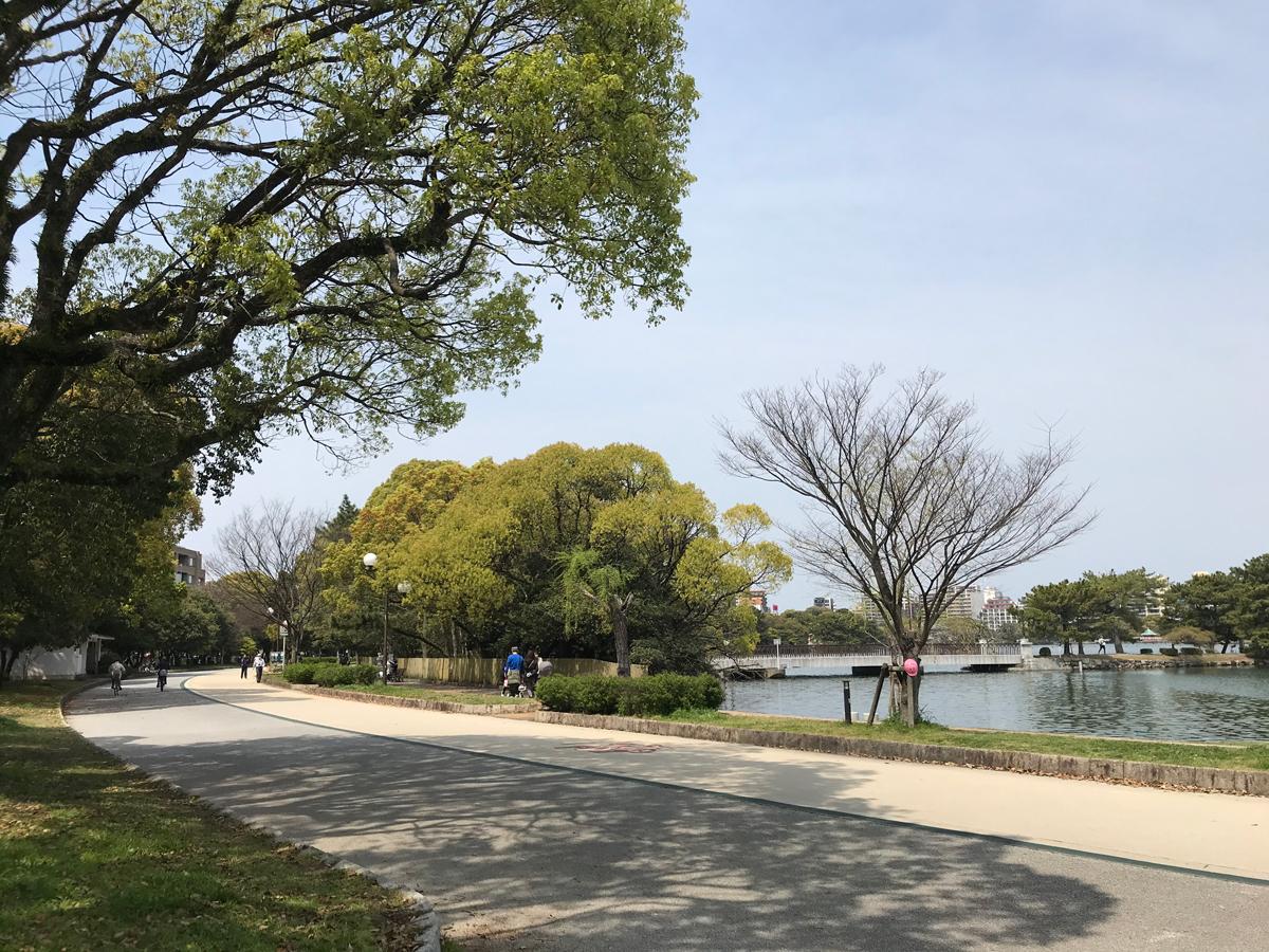 湖のような広い堀、豊かな緑を満喫できる大濠公園